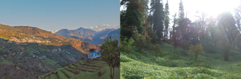 chopta sanctuary