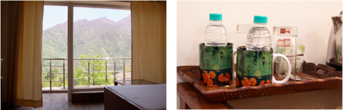 the-lily-rishikesh-room